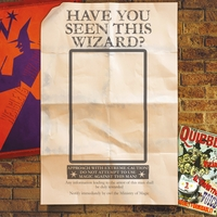 Wizarding World: Have You Seen This Wizard 12 x 12 Paper