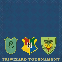 Wizarding World: Triwizard Tournament 12 x 12 Paper