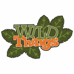 Zoo Tales: Wild Things Laser Die Cut