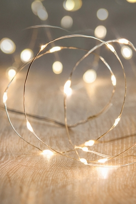 Vase And Centerpiece Fairy Light Strands 20 Submersible Leds Shopwildthings Com