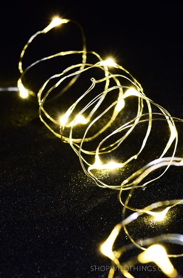 Fairy String Light 7 - Warm White LEDs - Waterproof - ShopWildThings.com