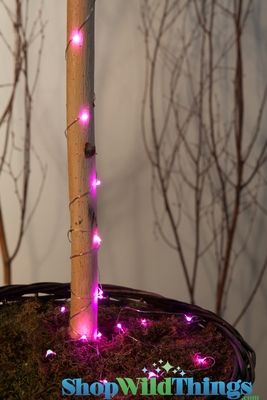 Led Light Strand Pink 6 Quot Long Waterproof Shopwildthings Com