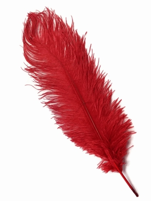 Red Feathers Red Ostrich Feathers For Vases