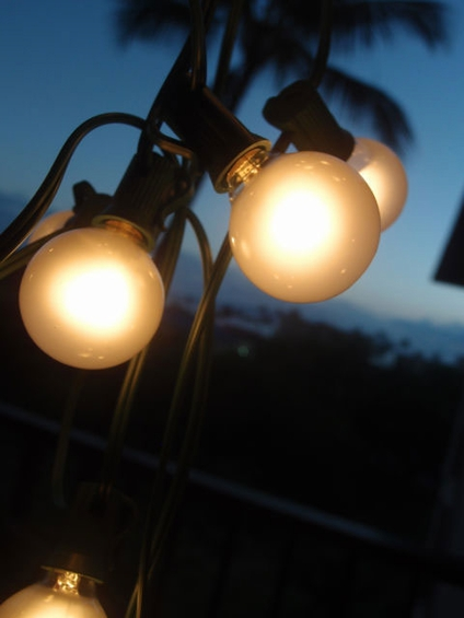 String Lights With Bulbs : Outdoor String Lights, Globe String Lights for Weddings, Parties, Patios, Restaurants, Light Strands