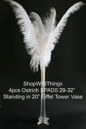 White ostrich feathers for eiffel towers vases