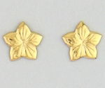 pierced earrings stainless steel Gold Flower star shaped