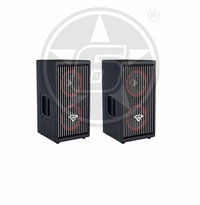 "Cerwin-Vega! (2) CVA-28 Dual 8"" 3-Way Powered Speaker Package"