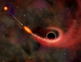 Star Ripped Up by Black Hole