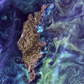 Starry NIght from Space