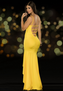 A Millionaire's Gala Sexy Long Gown