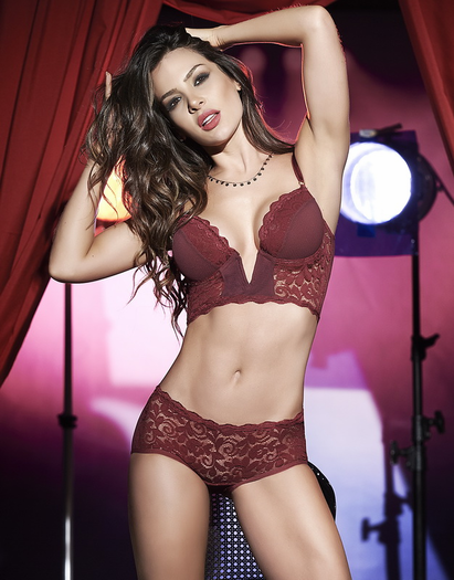 Confidential Meeting Sexy Lace Bra & Panty Set