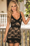 Dreams In Lace Sexy Mini Dress
