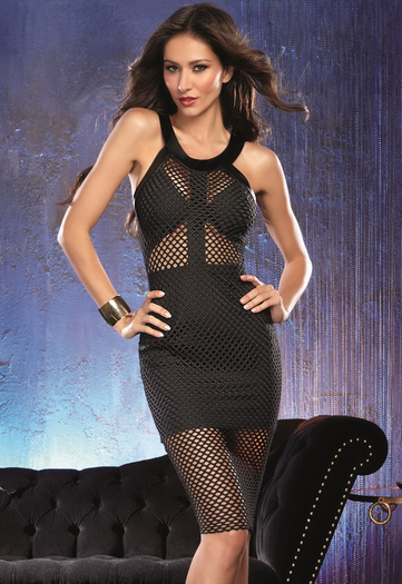 Fishnet Feelings Sexy Mini Dress