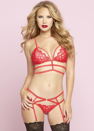 Tide Of Passion Red Bra & Garter Panty Set