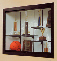 Harbor Series Recessed Trophy and Display Case