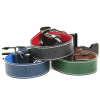 Personalized Leather Dog Collar or Leash
