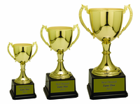 Metal Trophy Cups