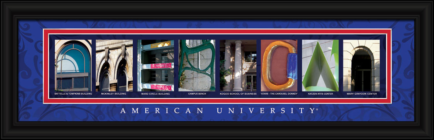 American university eagles campus letter art for Campus letter art