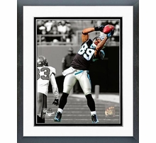Carolina Panthers Photos & Wall Art