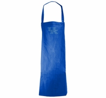 College Kitchen Aprons