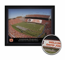 College Personalized Stadium Prints