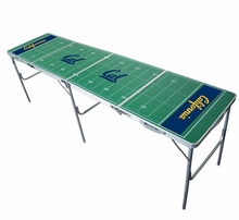 College Pong Tables