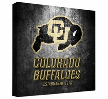 Colorado Buffaloes Photos & Wall Art