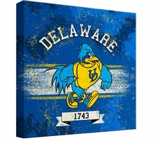 Delaware Blue Hens Home & Office