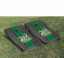 North Carolina Charlotte 49ers Tailgating Gear