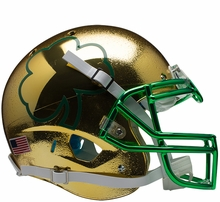 Notre Dame Fighting Irish Collectibles
