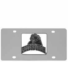 Pittsburgh Panthers Car Accessories