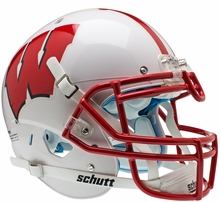Wisconsin Badgers Collectibles