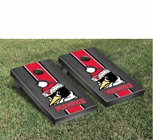 Youngstown State Penguins Tailgating Gear