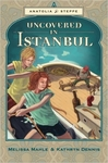 Uncovered in Istanbul: Anatolia Steppe Mystery (Volume 2)