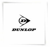 Dunlop Goggles
