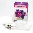Boxed Bears/Hearts Lollipop Kit - E! Makes Two 1 lb Batches!...DISCONTINUED...FINAL SALE