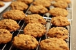 Pumpkin-Oat Cookies