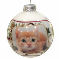 Holly Ribbon Photo Christmas Ornament