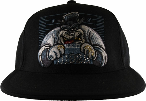 Disney Pete Hat