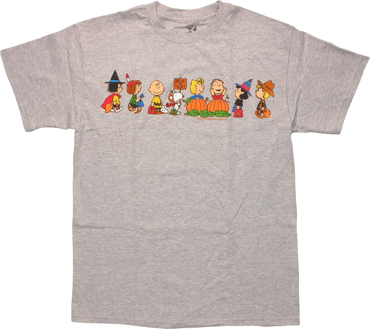 Peanuts the great pumpkin charlie brown t shirt The great t shirt