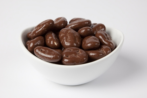 Chocolate Covered Pecans (10 Pound Case) - Sugar Free