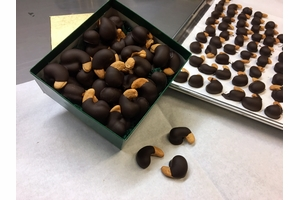 Chocolate Dipped Giant Cashews