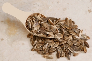 Raw In Shell Sunflower Seeds (10 Pound Case)