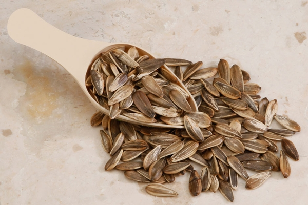 Unsalted In Shell Sunflower Seeds (12 oz Bag)
