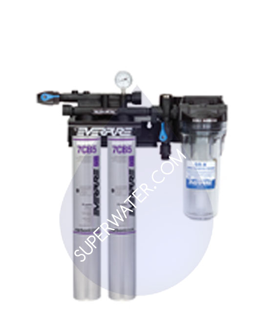 Ev9797 22 Everpure Kleensteam Ii Twin Water Filtration
