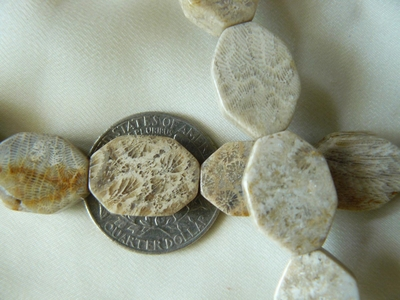 Agatized Fossilized Coral - Oval Octagon