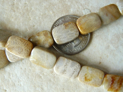 Agatized Fossilized Coral Rectangle gem beads 10x14mm 28 beads