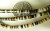 "Hammer hell Heishi beads 4mm brown and Ivory 16"" Strands"