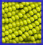 Olive Green Seed Beads 10/0