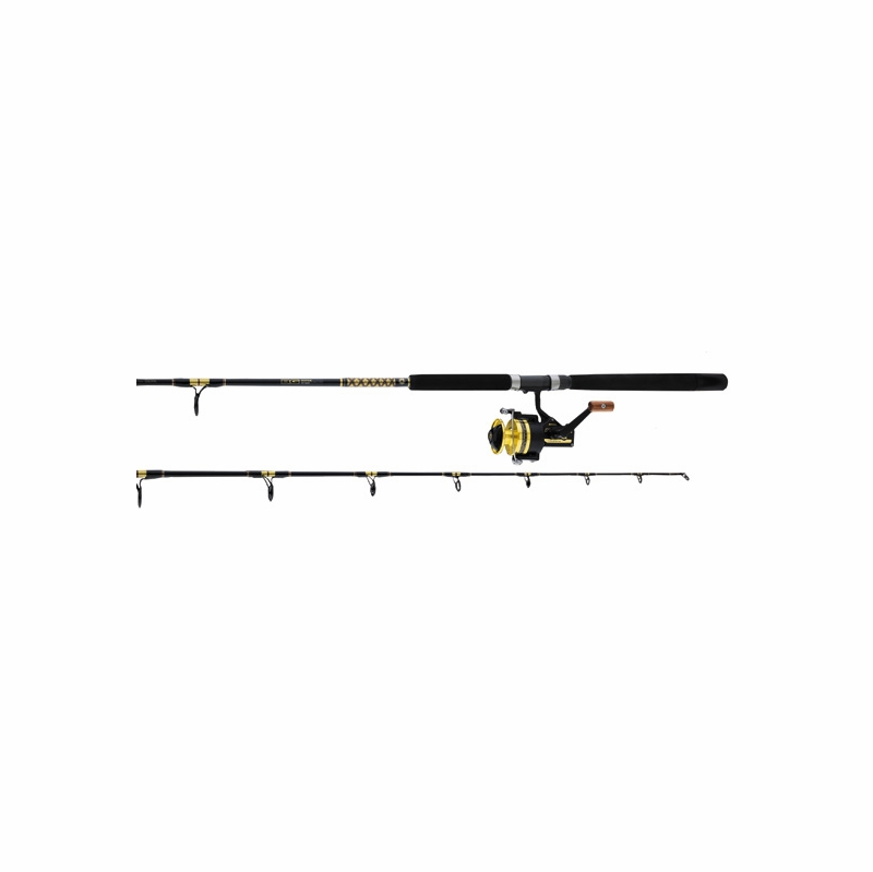 Daiwa bg60 bg701mrs bg system saltwater spinning combo for Saltwater fly fishing combo